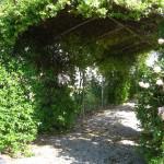 patio del giardino posteriore