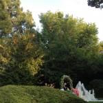 nozze parco Villa Manin Cantarella